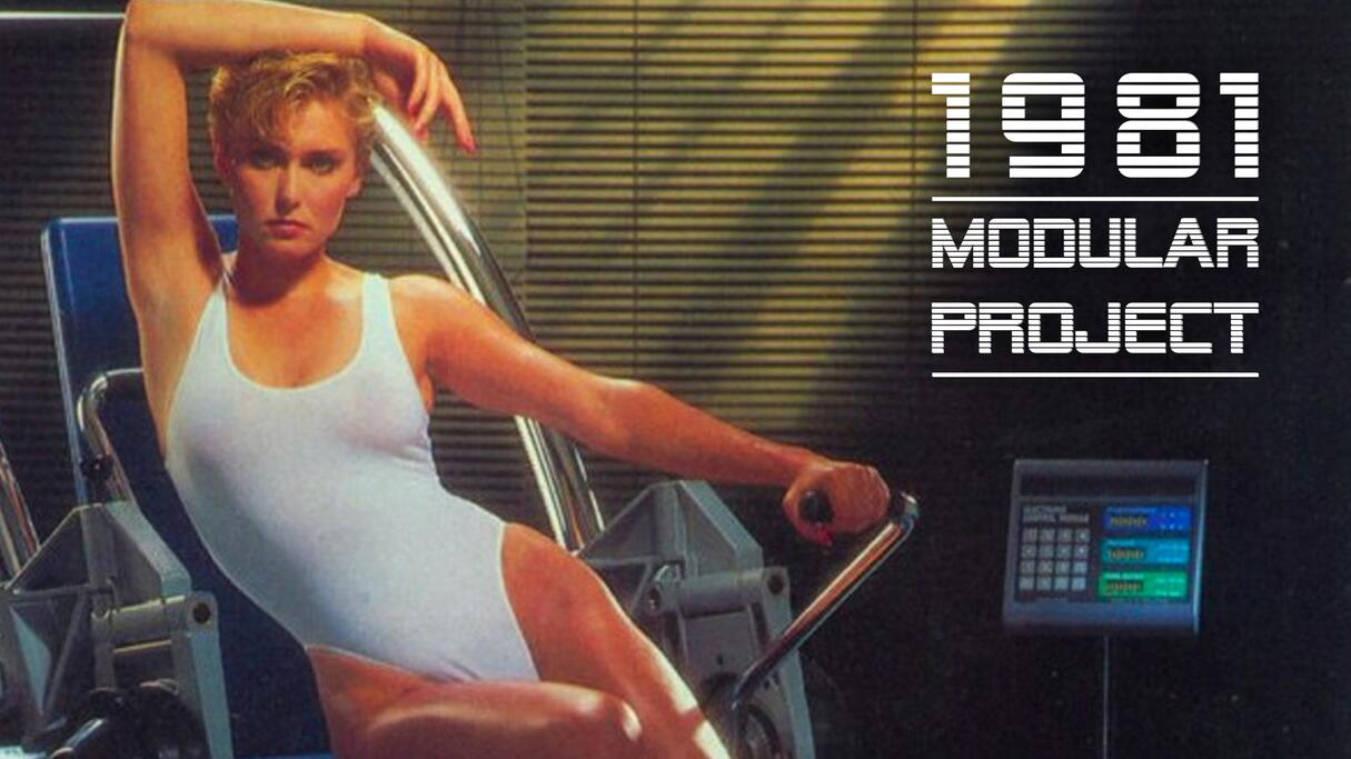 out now modular project 1981 sisters and brothers vol. 06